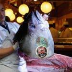 Na Japonskem prodana najdražja riba na svetu